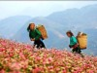 Ha Giang Trekking 10 days
