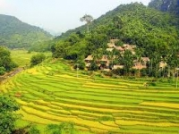 Vietnam incentive 8 days